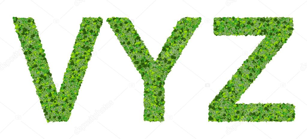 Letras V Y Z del alfabeto hechas de hojas verdes aisladas sobre ...