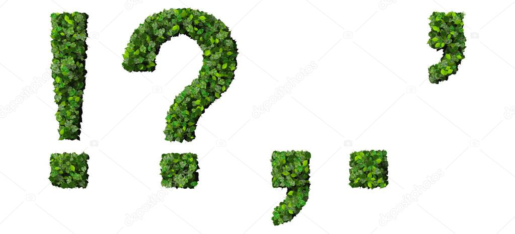 Alphabet marks, letters ! ? , . ' exclamation mark, question mark, comma, period, quotation marks made from green leaves isolated on white background.