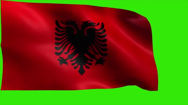 Republic of Albania, Flag of Albania, Albanian FLAG - LOOP