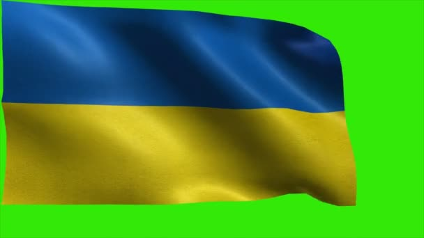 Vlajka Ukrajiny, ukrajinská vlajka - smyčka