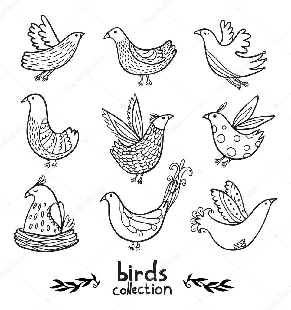 pássaros pretos coleção contorno vetores de stock apolinarias