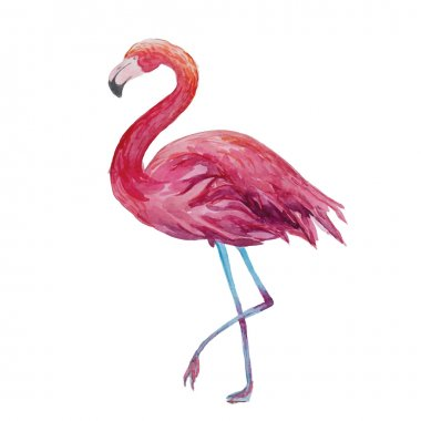 Watercolor flamingo