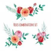 Fotografia giardino di rose dellacquerello
