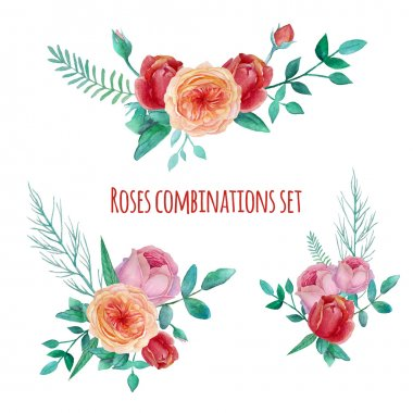 Watercolor garden roses