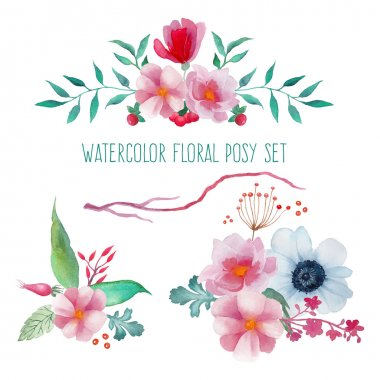 Watercolor floral posies