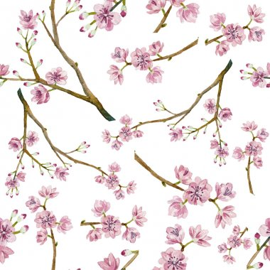 Watercolor sakura pattern. Seamless natural texture with blossom cherry tree branches. Hand drawn japanese flowers on white background clip art vector