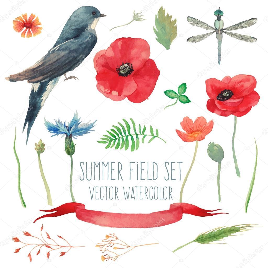 Watercolor summer set