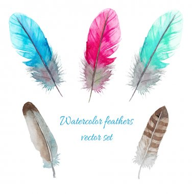 Watercolor birds feathers set. Hand painted artistic elements. Vector illustration clip art vector