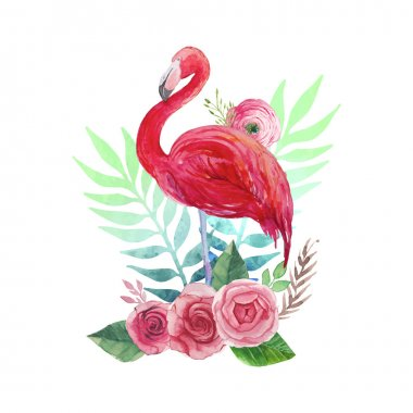 Watercolor Flamingo and flowers