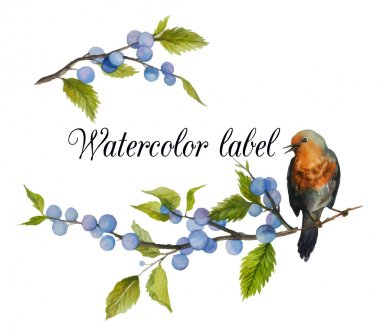Watercolor artistic wild berries and bird logo