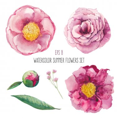 Watercolor peony, wild flowers and roses