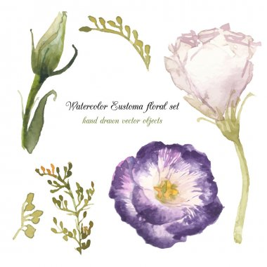 Watercolor herbs and eustoma elements set. Vintage leaves, flowers and branches. Vector hand drawn design illustration stock vector