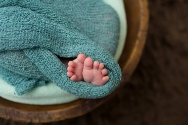 Newborn in a Bowl, Macro of Toes , Feet
