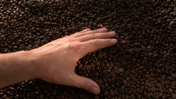 Kézi szedés megjelöl kávébab lassú mozgás