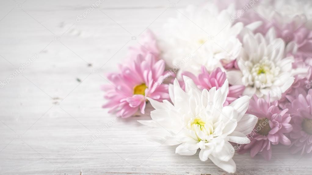 Fondo De Pantalla Flores Blancas En Fondo Rosa: Fondo: Flores Blancas Pantalla