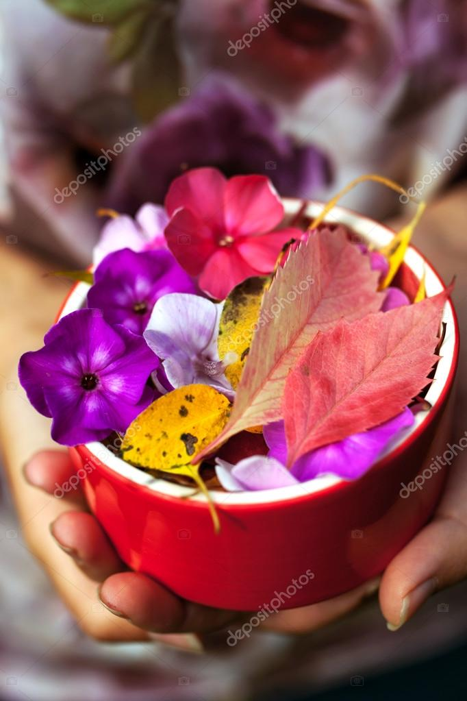 Colorful leaves and flowers on the ceramic bowl in the hands