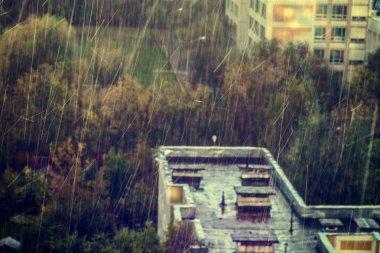 Buildings in the rain
