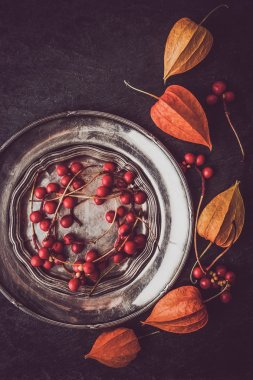 Red berries in the vintage metal plate with physalis vertical