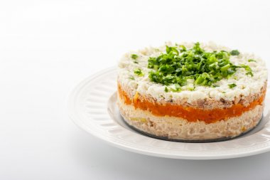 Layered salad with eggs and fish on the white ceramic plate horizontal