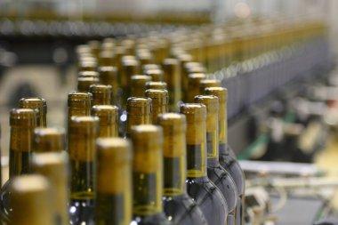 conveyor line for bottling wine in bottles