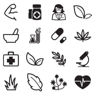 Herb icons set illustration