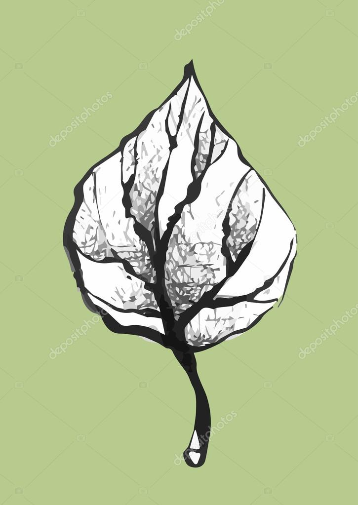 hand drawn black and white leaf