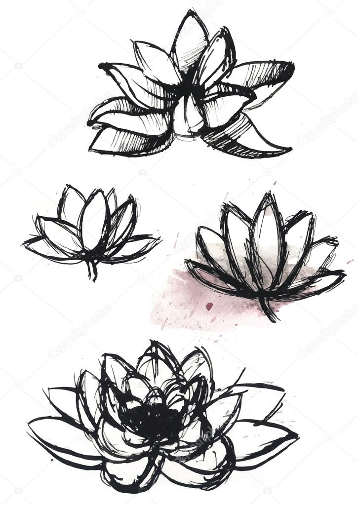 dry brush  lotus set