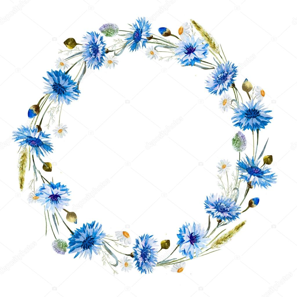 Cornflower watercolor wreath