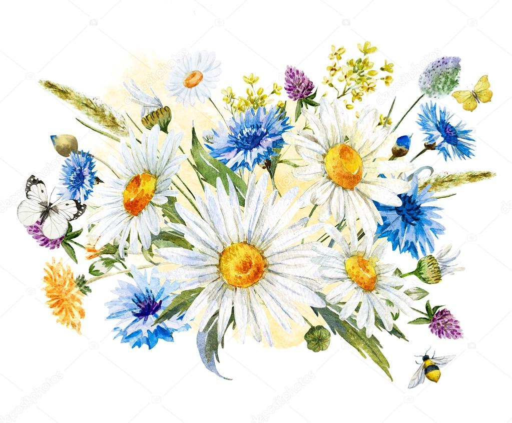 Watercolor wild flowers composition