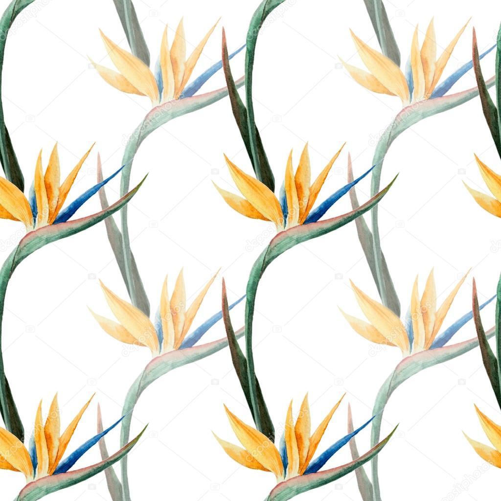 pattern, watercolor, flower