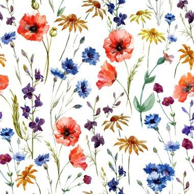 Watercolor poppy, cornflower, daisy wild flowers background