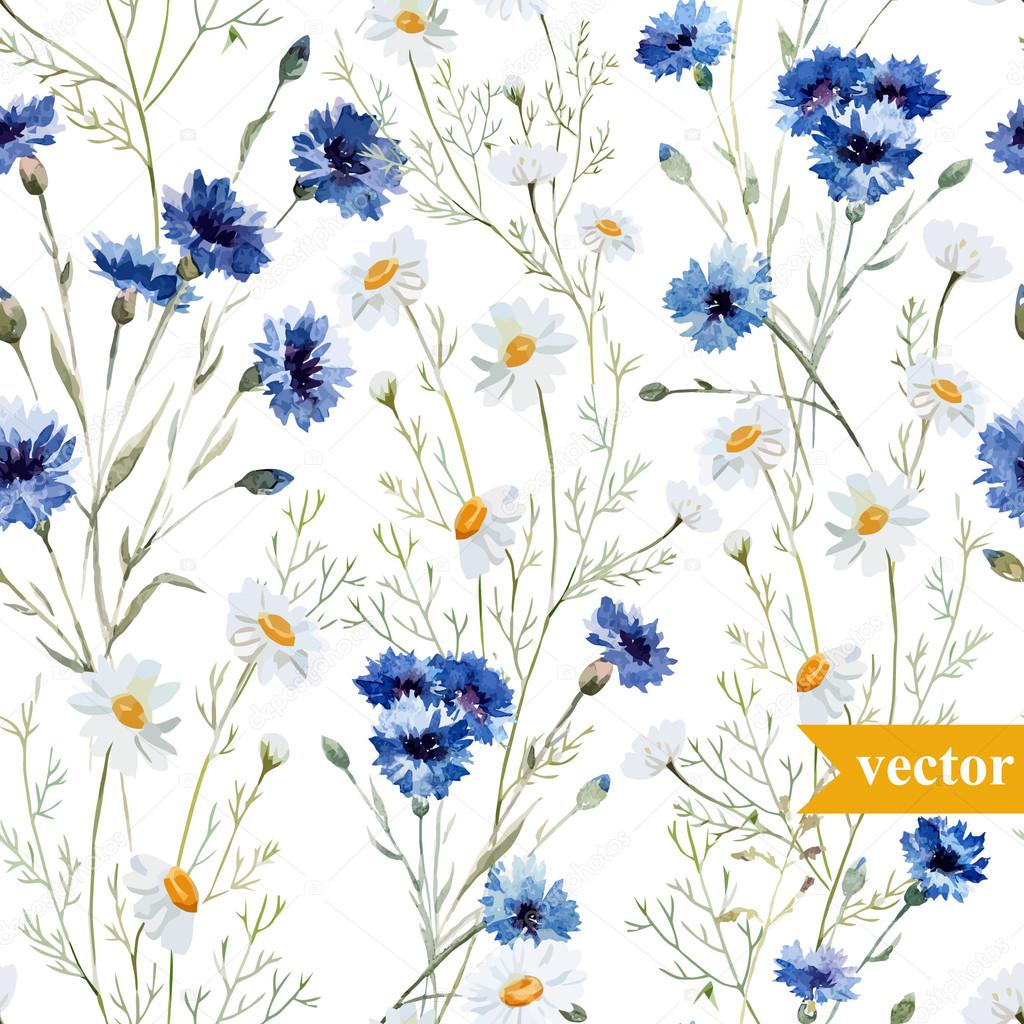 Watercolor poppy, cornflower, daisy wild flowers background