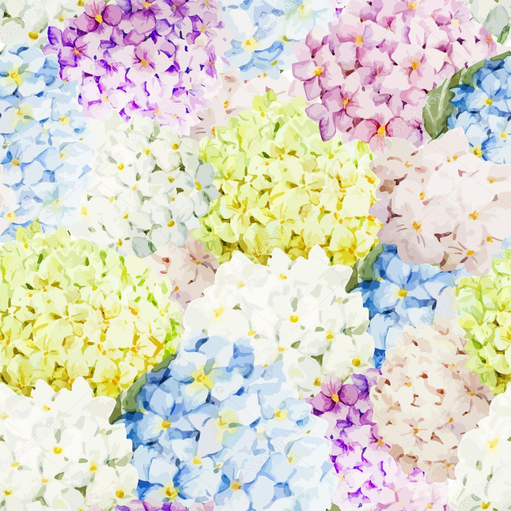 Dessin D Aquarelle Fleurs D Hortensia Image Vectorielle Zeninaasya