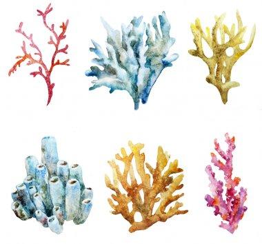 Ocean watercolor coral pattern