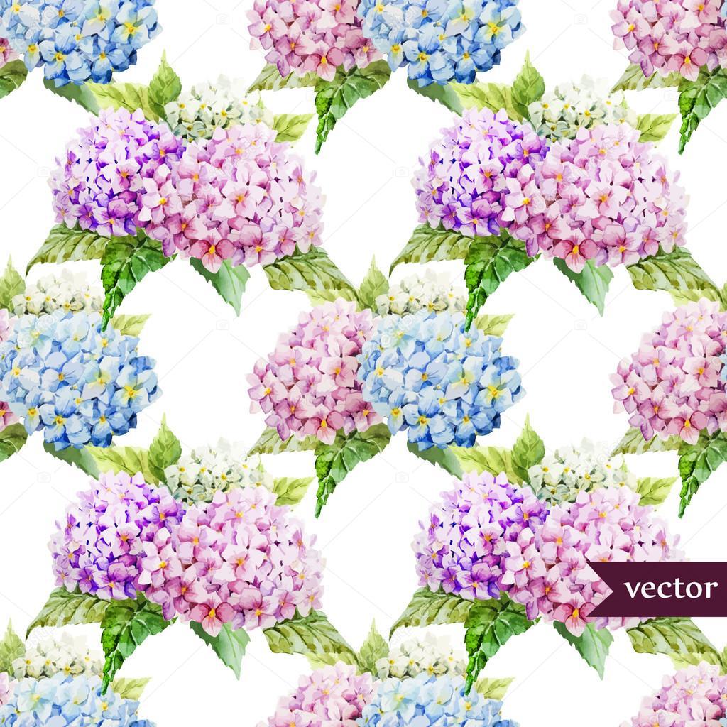 Dessin Aquarelle De Fleurs Hortensia Image Vectorielle Zeninaasya