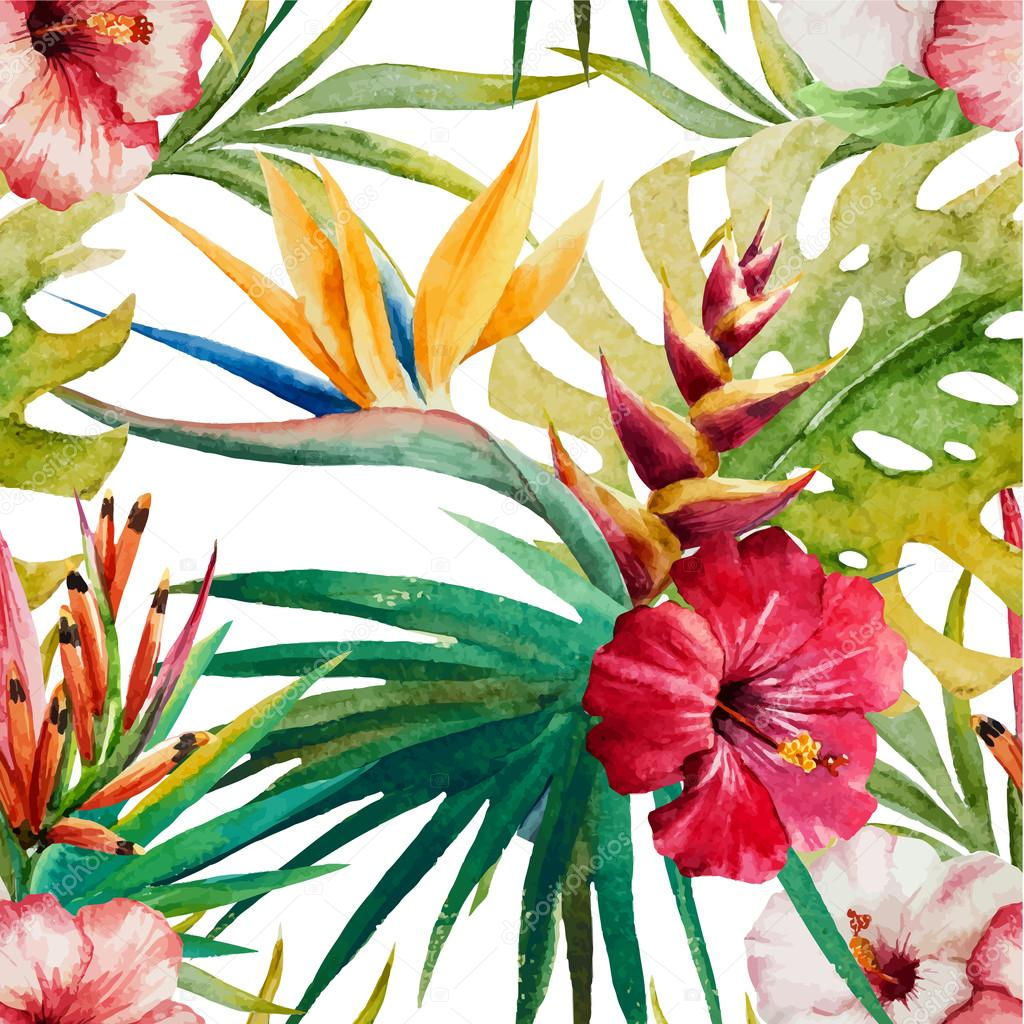 Sterlitzia tropical pattern