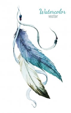 Nice feather