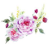 Fotografie Nice roses