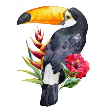 Watercolor toucan