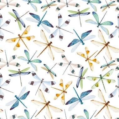 Beautiful vector pattern with nice watercolor dragonflies clip art vector