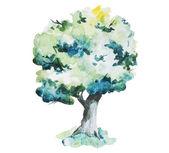 Akvarel stromy