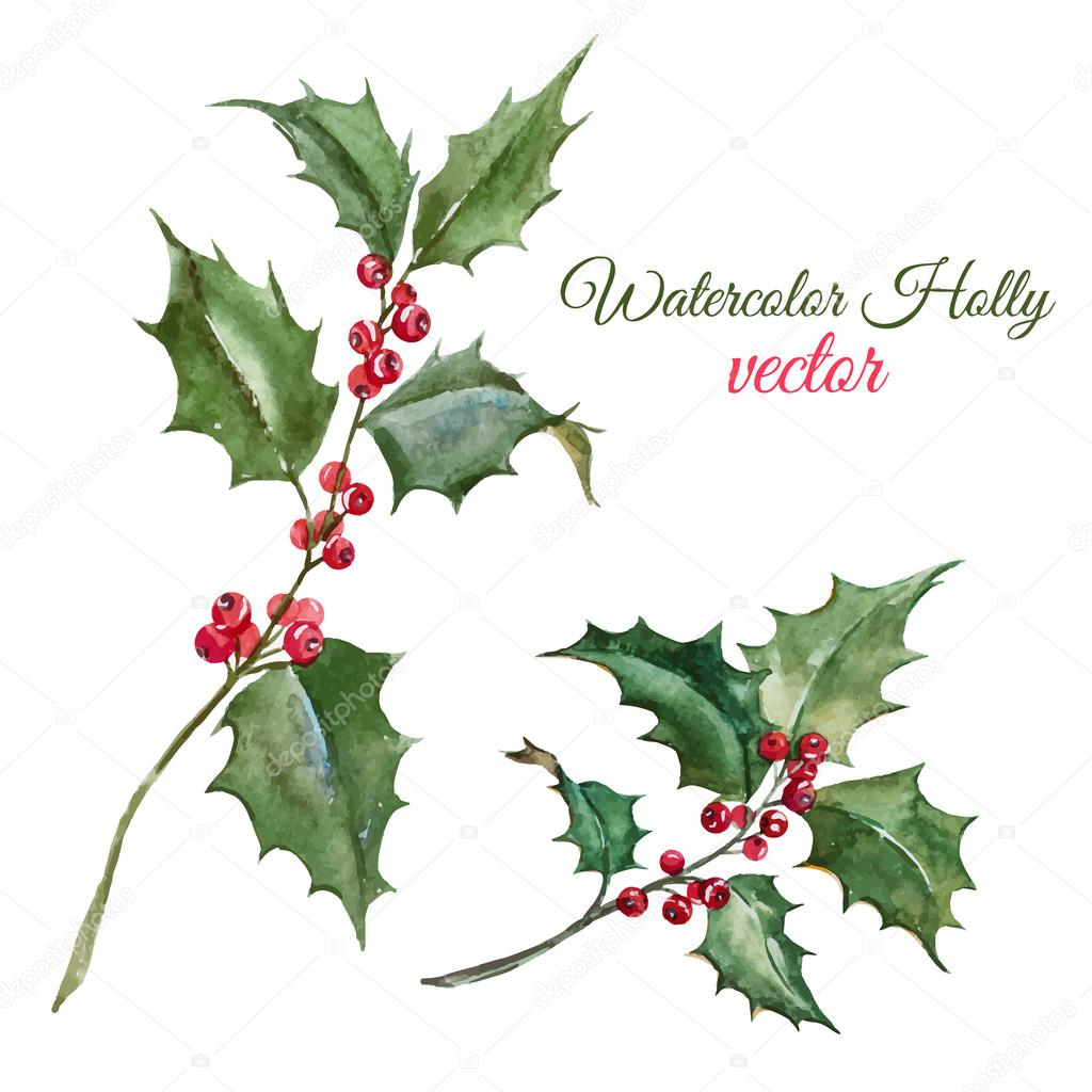 Christmas holly flower