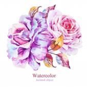 Akvarel vektorové květiny