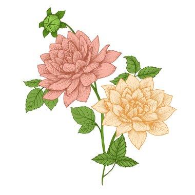 Nice vector flowers