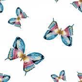 Akvarell raszteres pillangó mintás
