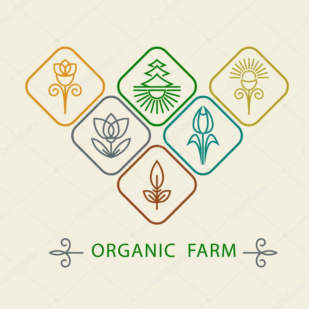 Logo design template agriculture and organic farm.  Abstract line icons elements and badge for food industry. Outline monograms nature symbols. Concept for organic shop. Vector illustration