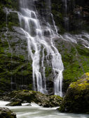 Waterfall in the Pacific Northwest