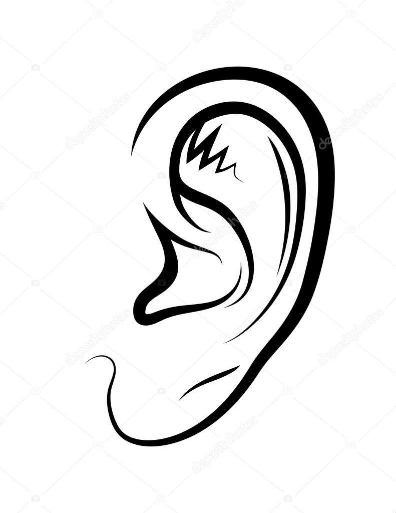 Zeichnung Von Einem Ohr Stockvektor Alexcosmos 67805503