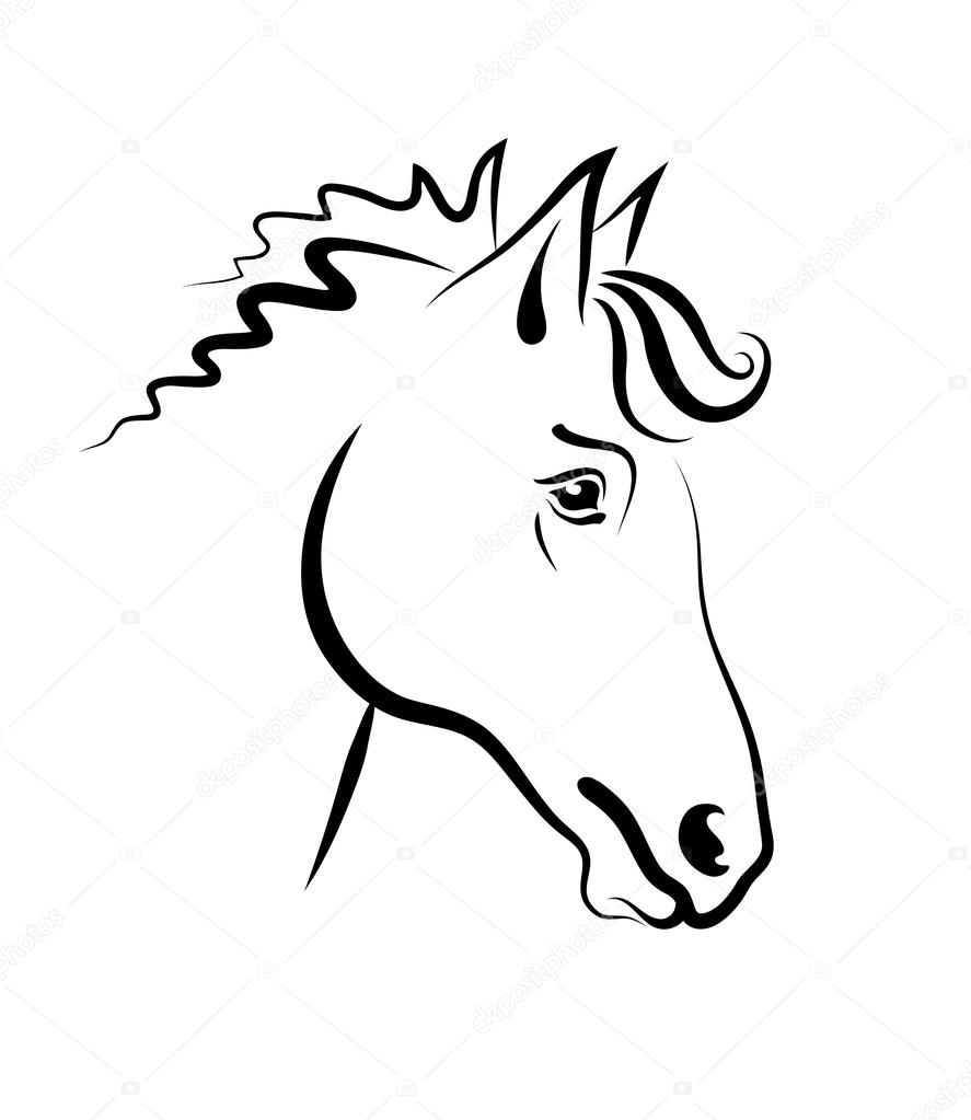 Kresba Hlavy Kone Stock Vektor C Alexcosmos 67805799