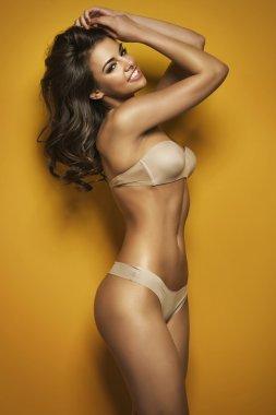 Alluring brunette wearing sexy bikini